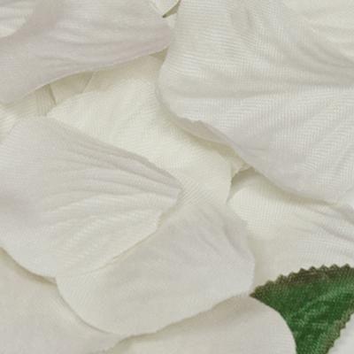 Eleganza Rose Petals x 1,000 Ivory