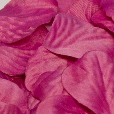 Eleganza Rose Petals x 1,000 Fuchsia