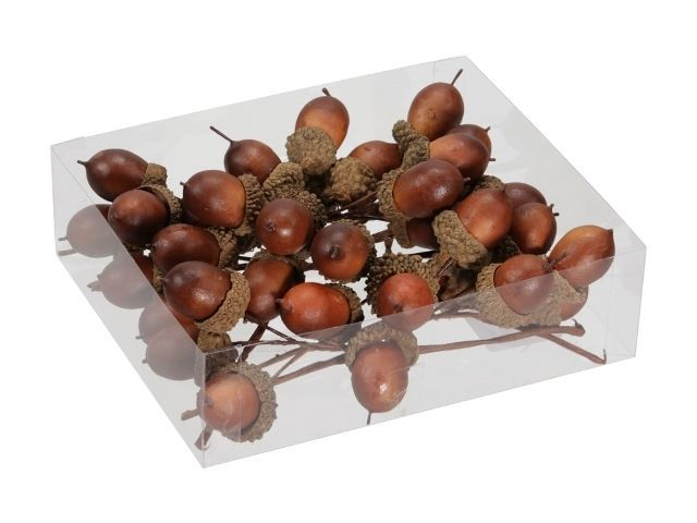 36 Acorn/Wire Light Brown 25 Mm (Artificial)