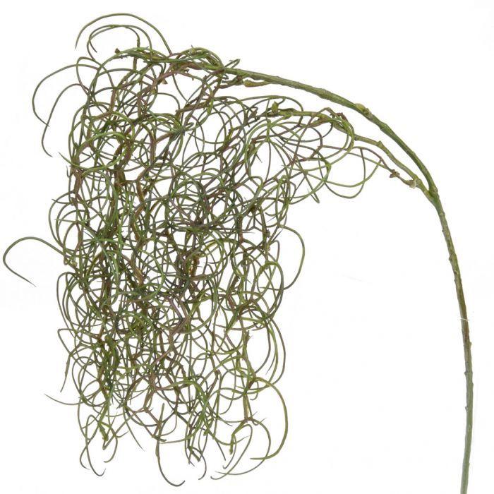 Curly Twig Foliage Green 62cm