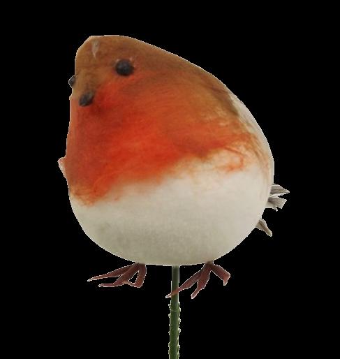 18cm (Inc Stem) Fat Robin Pick