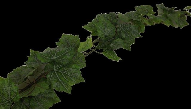 180cm Outdoor Grape Leaf Garland WR Green
