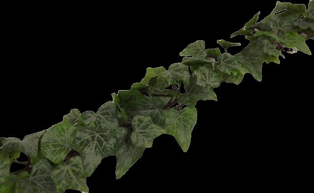 180cm Outdoor Blush Ivy Garland WR Green/Grey
