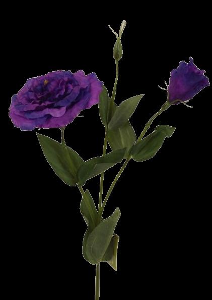 80cm Eustoma Spray Purple