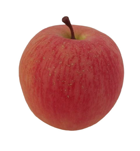 Discovery Apple (Not Weighted)