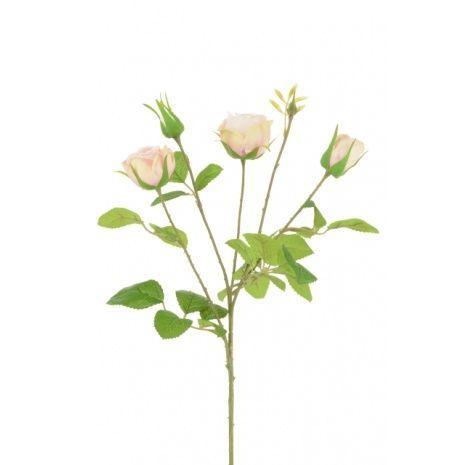 English Cabbage Rose x 4 -61cm Pink