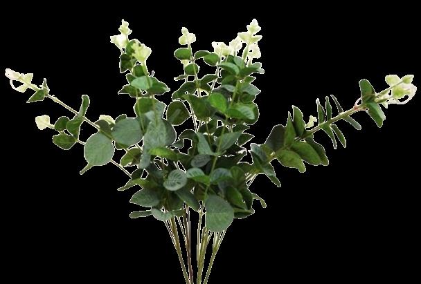 50cm Eucalyptus Bush x 200 Leaves
