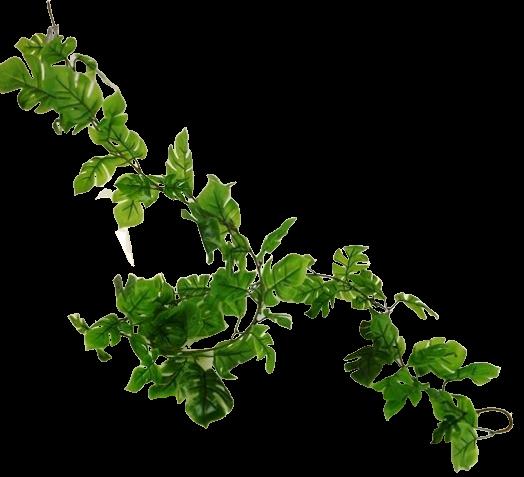 180cm Split Philo Garland x 76 Leaves