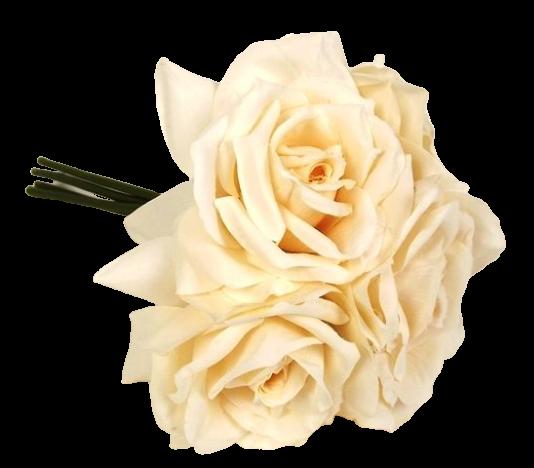 27cm Open Rose x 5 Heads Posy Light Peach