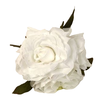 24cm White Open Rose Posy