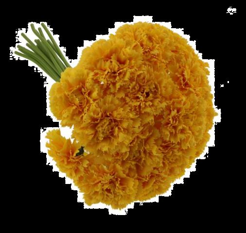 32cm Carnation Bundle Yellow