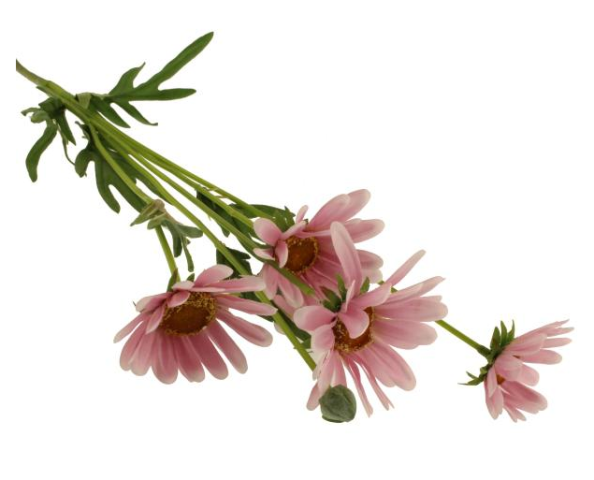 72cm Daisy Spray Pink
