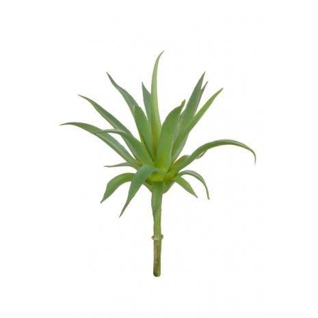 Aloe Pick 20cm Green