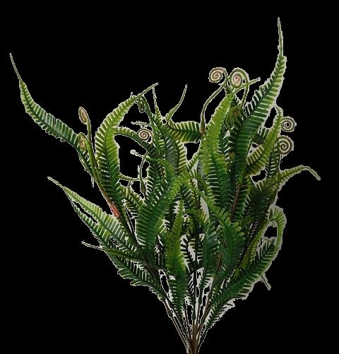 48cm Fern Bush