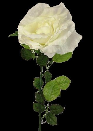 115cm Cream Large Rose Stem