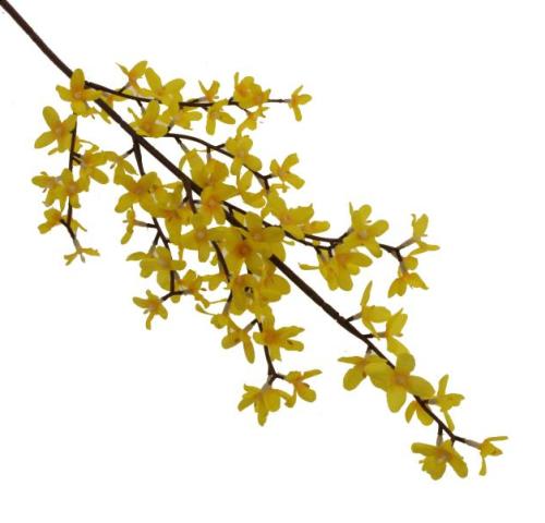 55cm Forsythia Spray Yellow