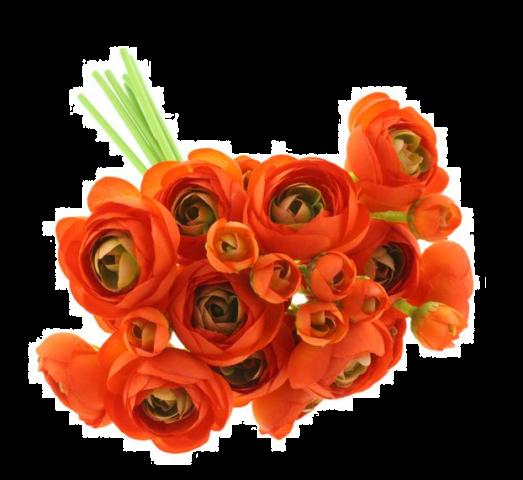 28cm Ranunculus Bundle Green/Orange
