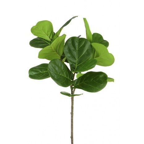 Fiddle Leaf Stem 106cm
