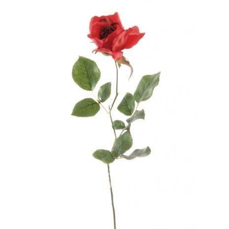 Alice Rose Red 70cm