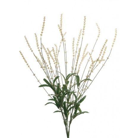 English Lavender Bush 59cm White