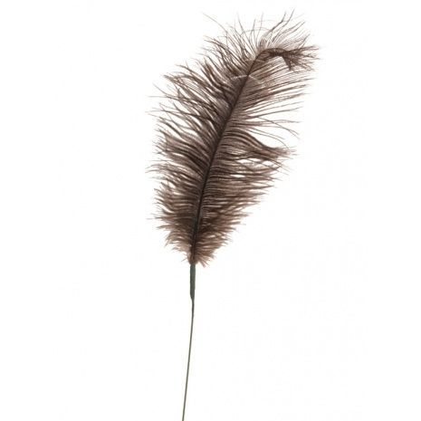 Feather Quill 76cm Mink