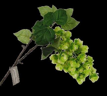 66cm Hop Foliage Spray