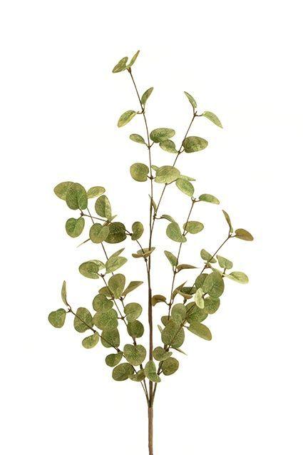 Eucalyptus Spray 85cm Green/Gold