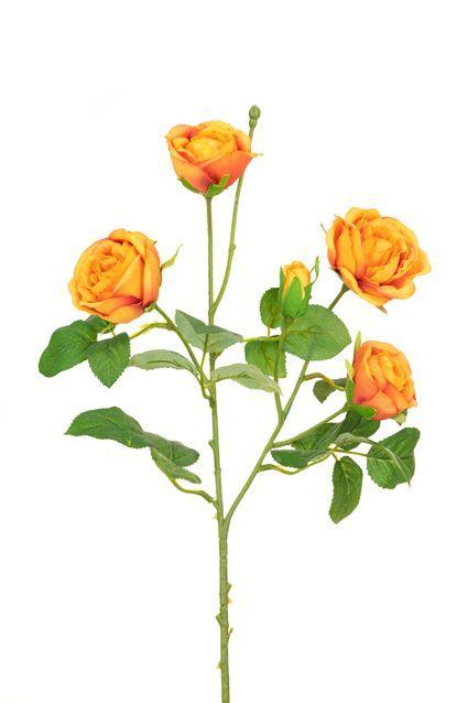 Abeba Rose Spray x5 - 60cm Orange