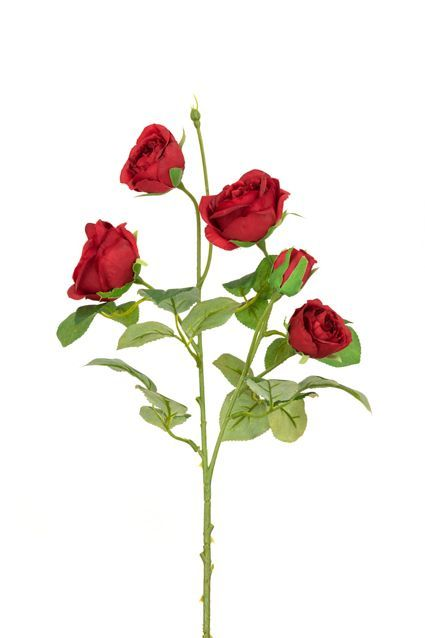 Abeba Rose Spray x5 - 60cm Red