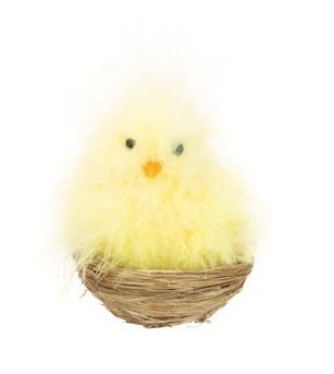 Chick Nest with Clip - 10cm