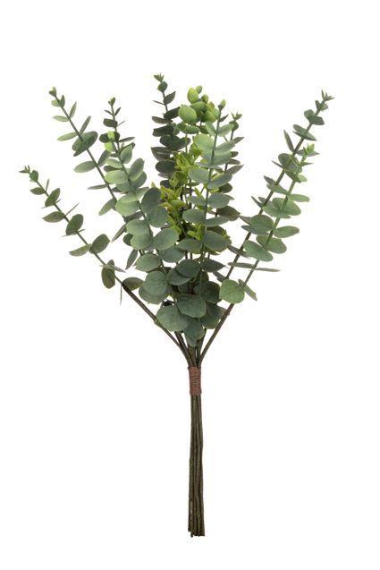 Eucalyptus Bundle - 46cm