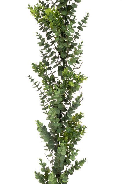Eucalyptus Garland - 183cm