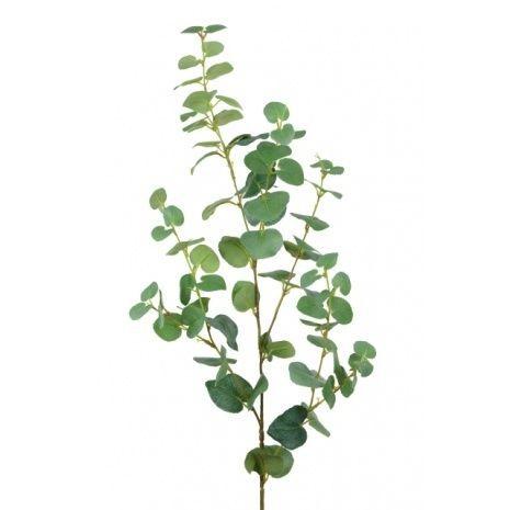 Eucalyptus Spray-102cm Green
