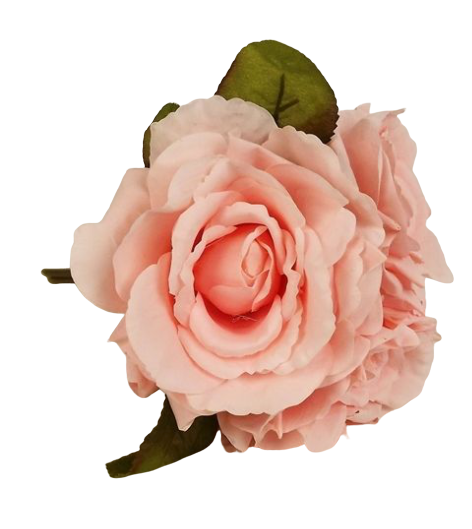 24cm Light Coral Open Rose Posy