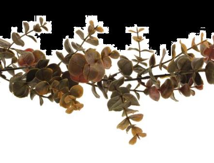 180cm Eucalyptus Garland Brown/Autumn