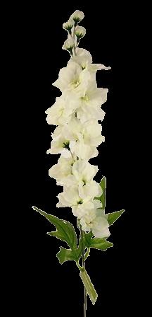 78cm Delphinium Spray Cream