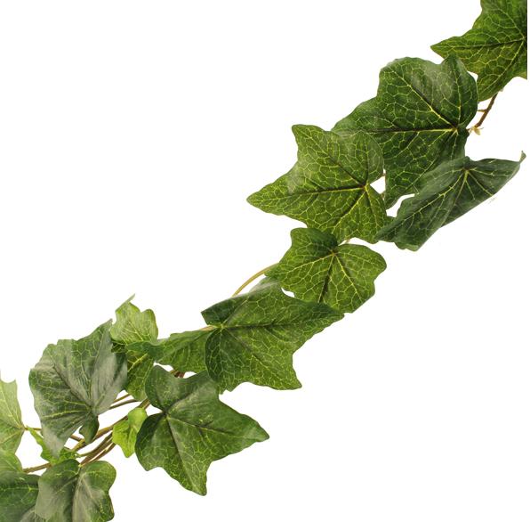 180cm Outdoor Eng Ivy Garland Green