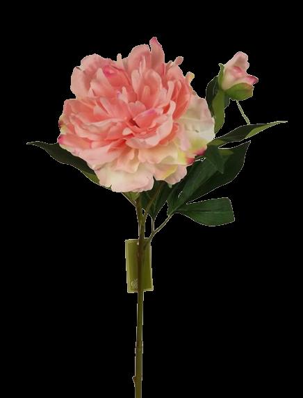 66cm Peony Pink