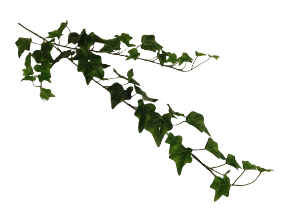 80cm English Ivy Spray Weather Resistant Green