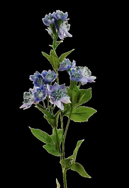 50cm Astrantia Spray Lavender