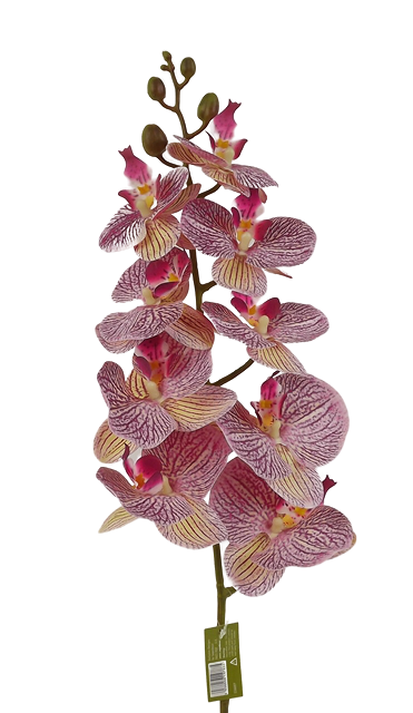 100cm Phalaenopsis Orchid Spray Red