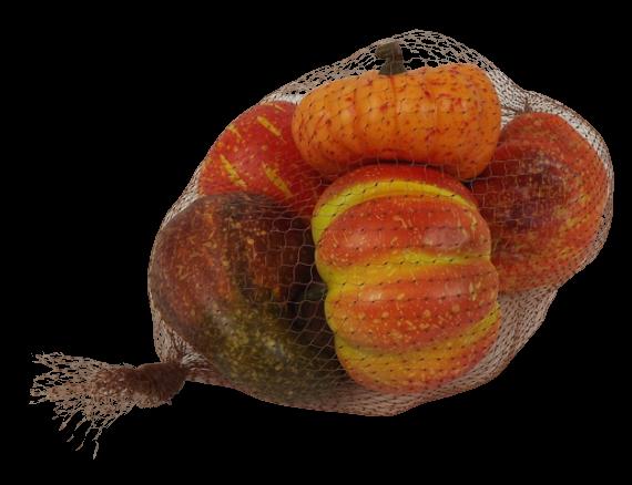 10cm Pumpkins In Net x 6pcs