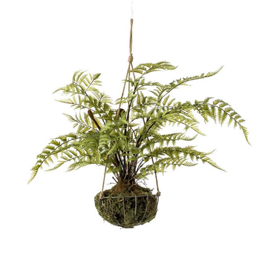 Fern Forest In Iron Stand Hanging 45cm