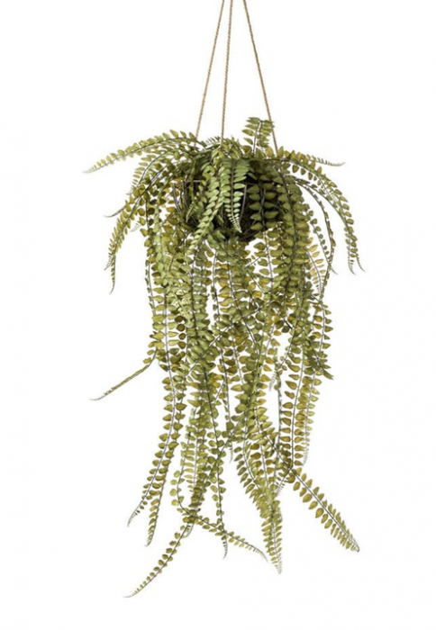 Fern In Iron Stand Hanging 95cm